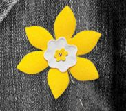 Do you have your Daffodil Pin yet? #DaffodilMonth #DaffodilSpotting