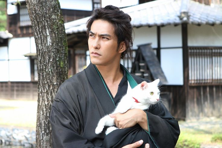 A cute kitty melts a swordsman's heart in the live action version of 'Neko Samurai'