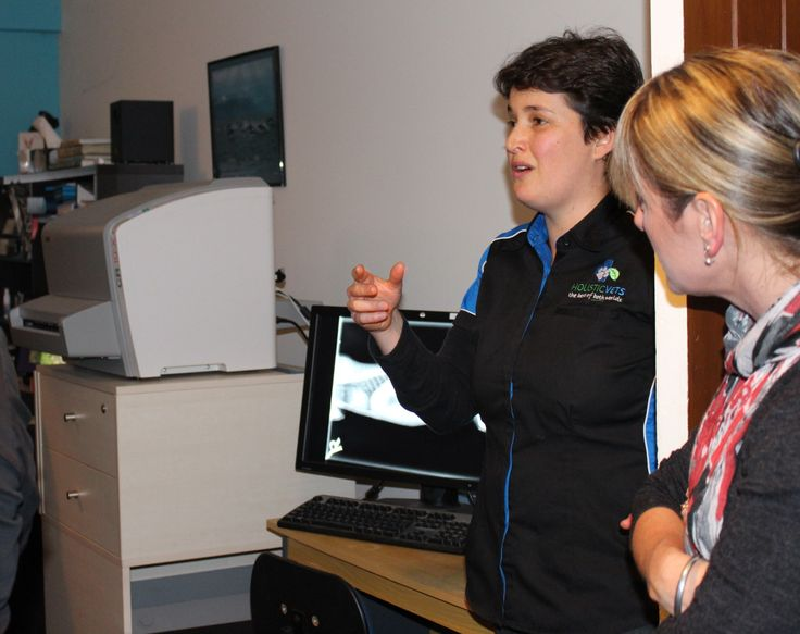 A few photo's from Green Drinks that we and Holistic Vets hosted. Everyone had some drinks and nibbles and got a tour of the clinic with some background info about everything. (Our very handy x-ray machine)