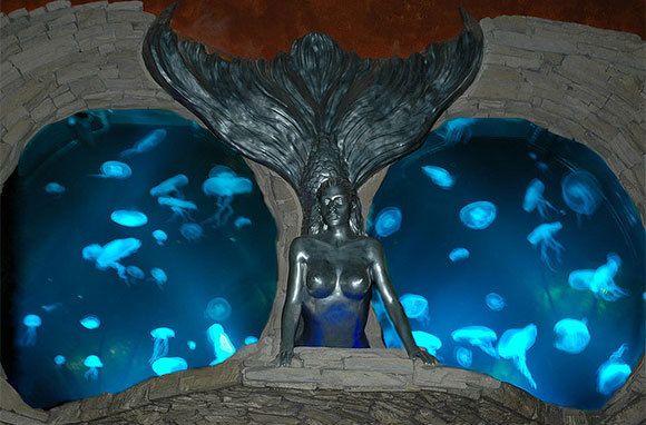 Aquarium At Silverton Casino