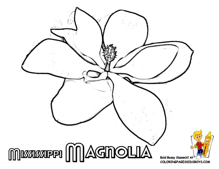 Mississippi State Fair Coloring Pages Coloring Pages