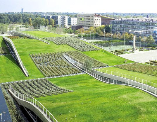 green roof, solar power, france, europe, green building, photovoltaics, solar panels, government, commercial building, urban heat island, rainwater, energy efficiency, building efficiency, environmental law, new construction