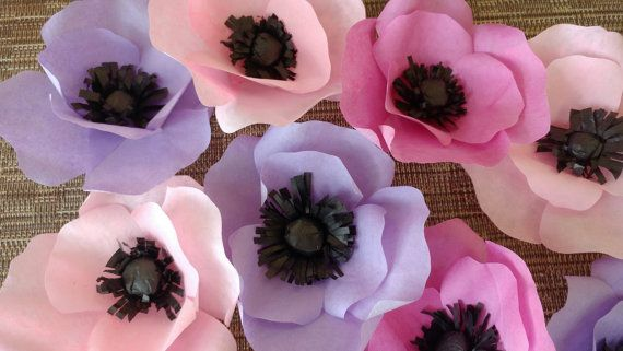 Anémonas de papel papel de flores silvestres flores sin