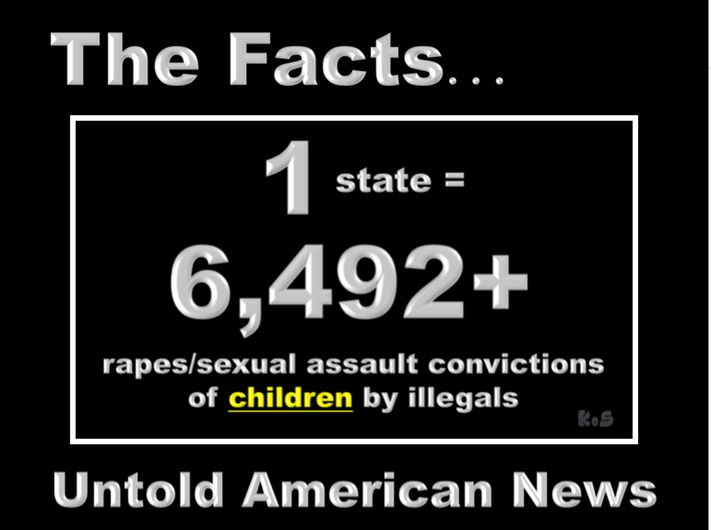 1 State = 6,492+ Rape/Sexual Assault Convictions of Children by Illegals-This is shocking - is this true??-Unfortunately, it is.- The following statistics and data have been compiled, verified and documented by NCFIRE - North Carolinians For Immigration Reform and Enforcement.-www.ncfire.info-Statistics reveal the number of convictions for rapes and/or sexual attacks of children in NC is 6,492.