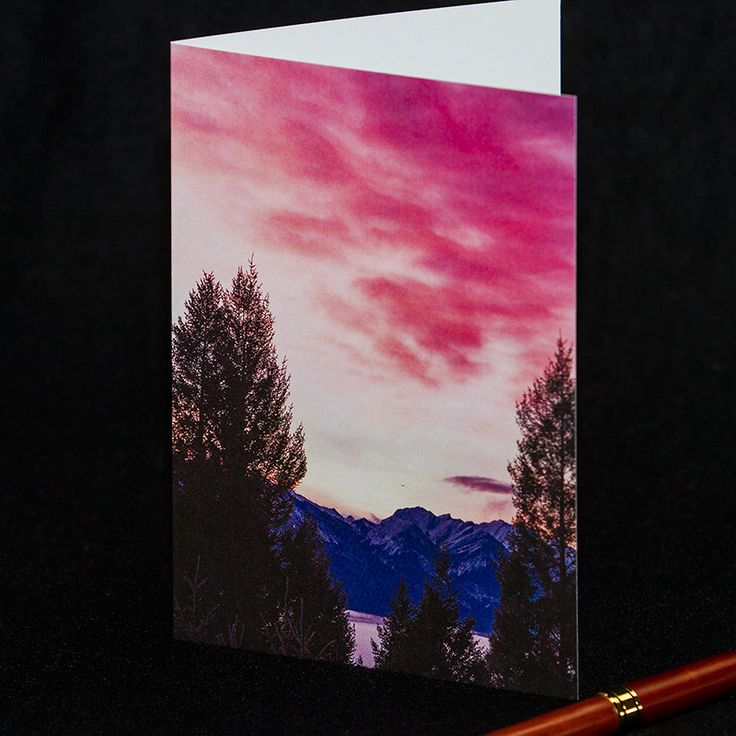 **20% OFF** everything in shop - photo greeting cards & photo digital downloads! Click here: https://www.etsy.com/ca/shop/TanyaDeLeeuwPhoto?ref=hdr_shop_menu