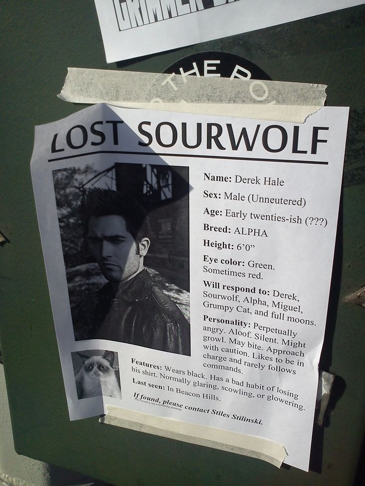 Lost Sourwolf [Teen Wolf] I feel like this is something Stiles would put up if Derek went missing. Seriously though, whoever did this I applaud you. My cheeks hurt from the amount of smiling that is happening.