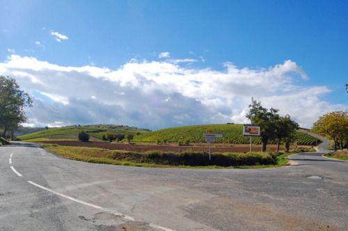 Fork in the road shaped like a heartThe Roads, Roads Shape