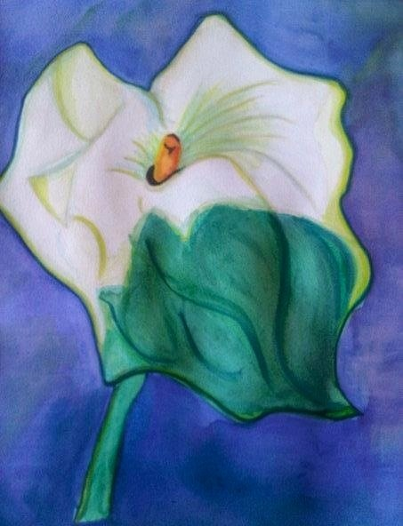 First ever Watercolour..... Arum Lily.