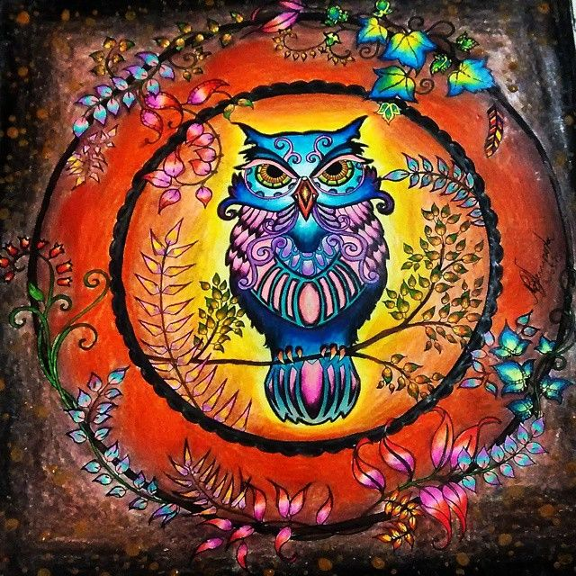 34 Best Images About Owl Enchanted Forest Coruja Floresta