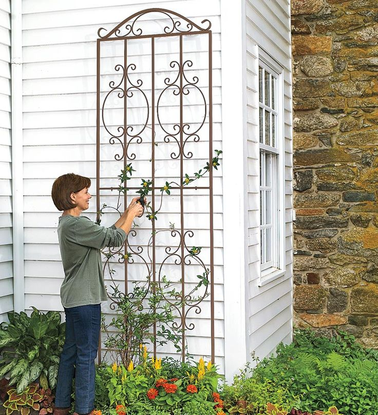 Burnished Bronze Finished Iron Montebello Tall Trellis 32