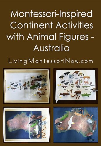Easy-to-prepare Montessori-inspired Australia activities using one Safari Ltd. TOOB and free printables