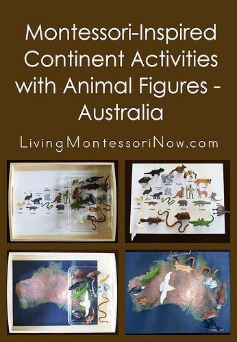 Simple-to-prepare Montessori-inspired Australia activities using one Safari Ltd. TOOB and free printables. Perfect for any Australia Montessori continent box.