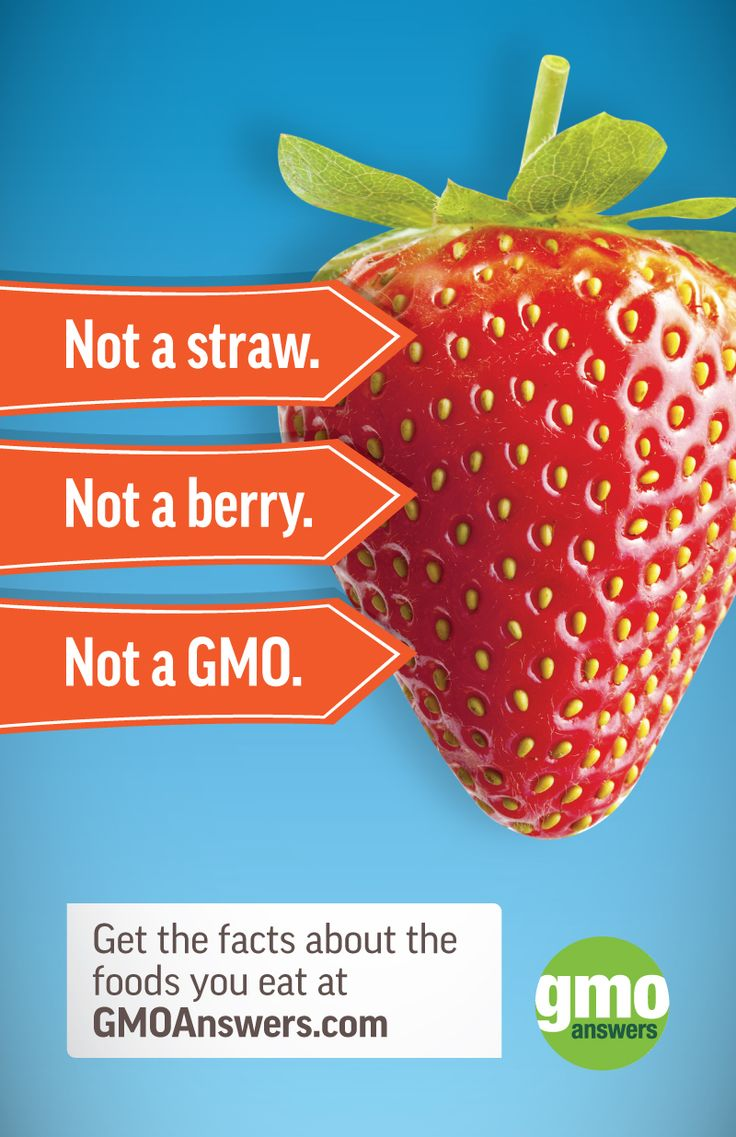 No matter how big, squishy, or weird your strawberry is, it isn't a GMO. GMOs aren't bigger, and don't taste any differently than other crops. Learn what *does* set GMOs apart from other crops here: https://gmoanswers.com/explore?carouselid=1&slideindex=2