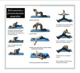 Estiramientos para espondilolistesis buscar con google salud pinterest - Ejercicios en piscina para hernia discal l5 s1 ...