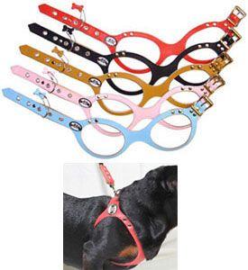 Buddy Belt Dog Harness (Classic Regular Colors) Padded Dog Harness Soft