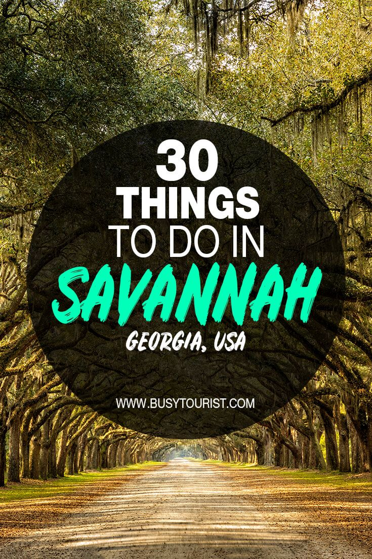 30 Best Fun Things To Do In Savannah Georgia Savannah Chat Travel Savannah Savannah Georgia