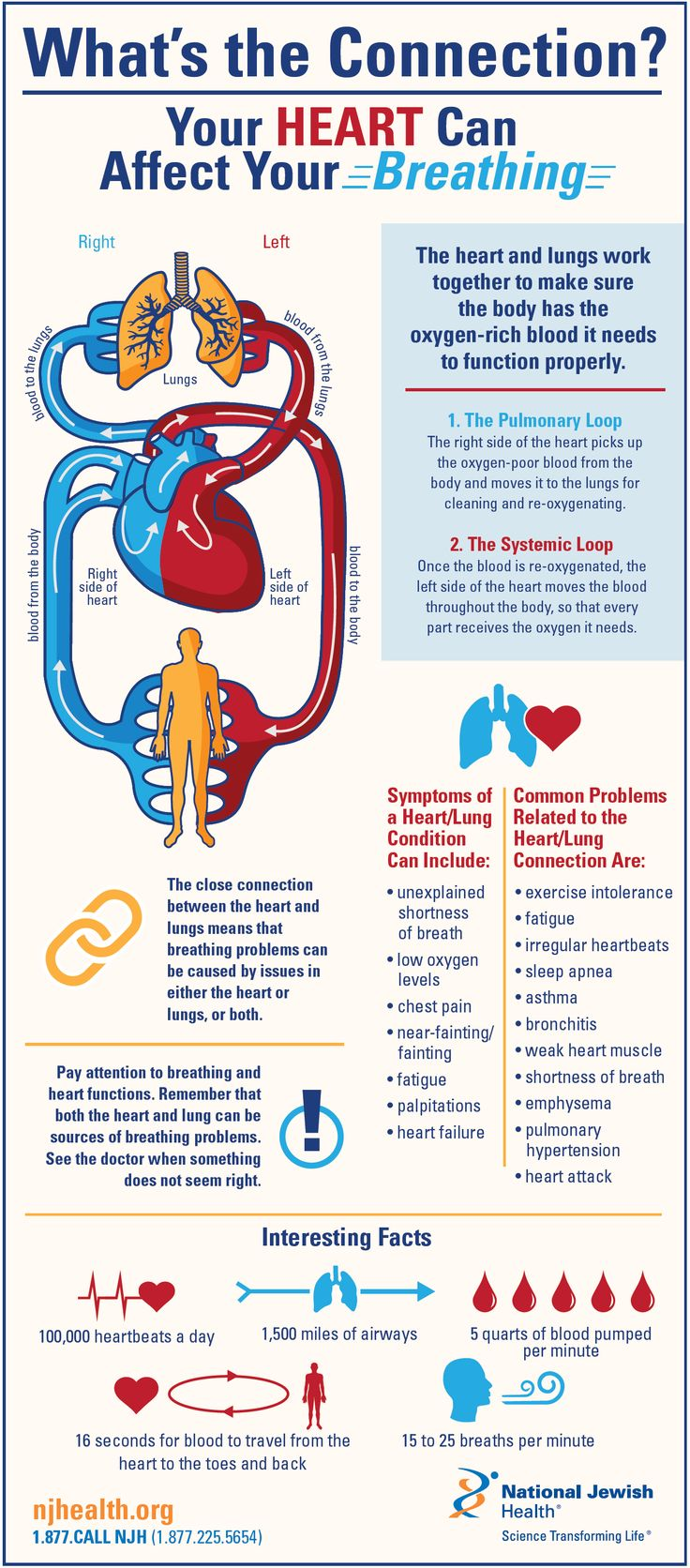 17 Best Images About Health Infographics On Pinterest