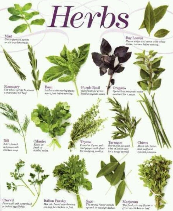 Foods As Chinese Medicinal Herbs