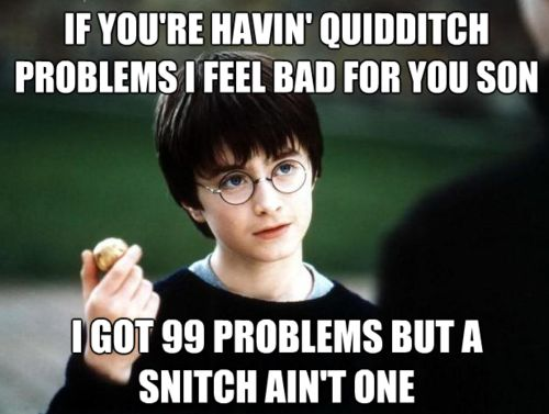 Snitches love Harry.