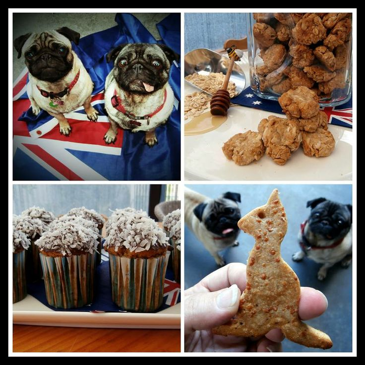 Aussie Day Doggy Fun from Go Fetch Bakery.
