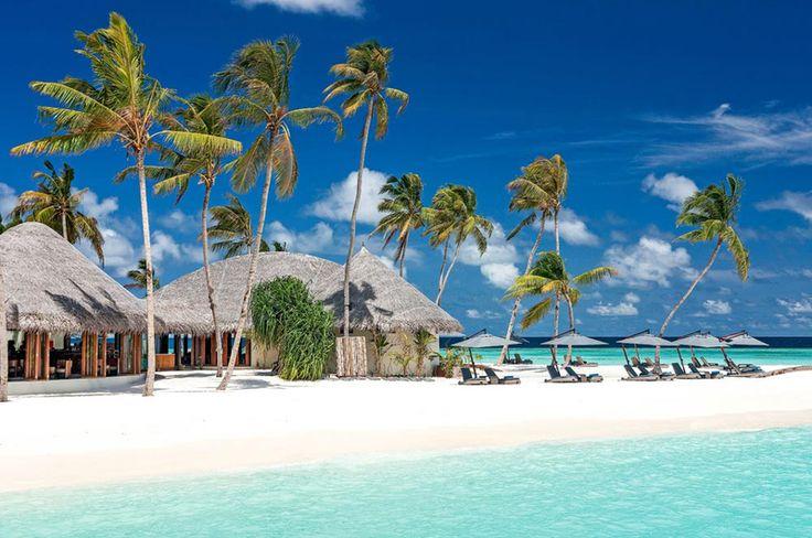 Strandurlaub auf den Malediven Inseln