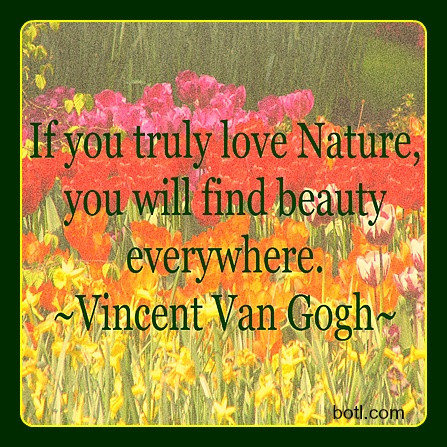 There is beauty all around us! | Inspirational quotes