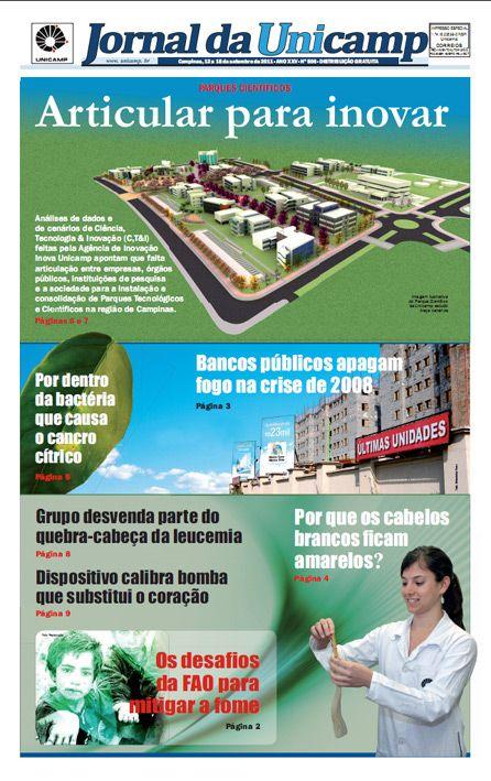 Articular para inovar. Estudos mapeiam o desenvolvimento de C,T&I na região de Campinas