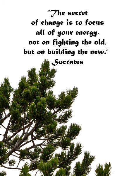 """""""The secret of change is to focus all of your energy, not on fighting the old, but on building the new.""""  Socrates -- Explore journey quotes, both ancient and modern, at http://www.examiner.com/article/travel-a-road-of-literate-quotes-about-the-journey"""