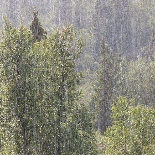 Pøsregn er ikke alltid lett å fange med kamera, men den 15. august klarte @masasa51 dette på ypperlig vis. Fra hytta under Gråfjell i Flå kommune. Voldsomme regnbyger er ett av kjennetegnene ved været i 2014.