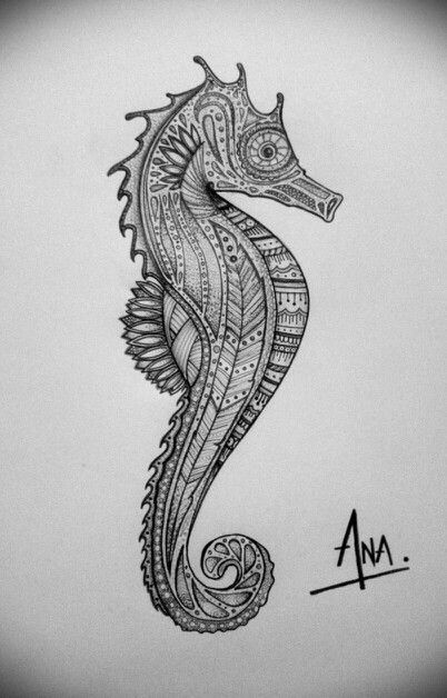 seahorse zentangle by ana larrotta my drawings pinterest seahorses and zentangle. Black Bedroom Furniture Sets. Home Design Ideas