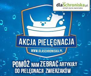Platforma dlaSchroniska.pl powstała, by ułatwić Internautom wspieranie najbardziej potrzebujących schroniska dla zwierząt w Polsce – każdy, kto chce pomóc bezdomnym psom i kotom, może w szybki i prosty sposób zakupić dla nich niezbędne produkty. Każde Schronisko, które podjęło współpracę w ramach akcji dlaSchroniska.pl, raz w miesiącu otrzymuje przesyłkę kurierską z wszystkimi zakupionymi przez Internautów artykułami.  Felineusiaki na dla schroniska.pl: http://dlaschroniska.pl/schronisko/46