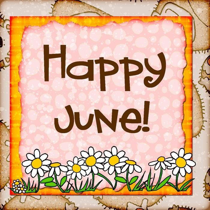 Happy June! #june happy june daisies