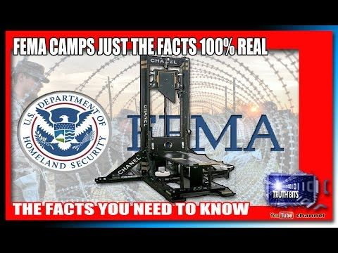 61 best Fema images on Pinterest Conspiracy theories, Camps and - fema application form