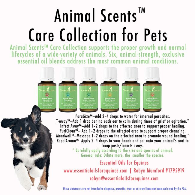 Young Living Animal Scents - you can buy separately now!