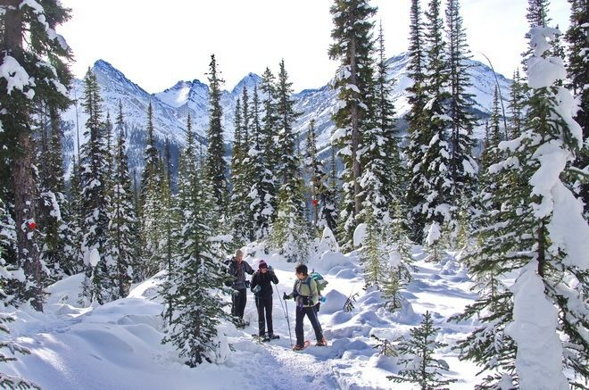 Snowshoeing to Chester Lake in Alberta