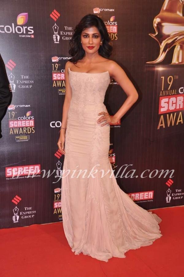 Chitrangda Singh at the Screen Awards