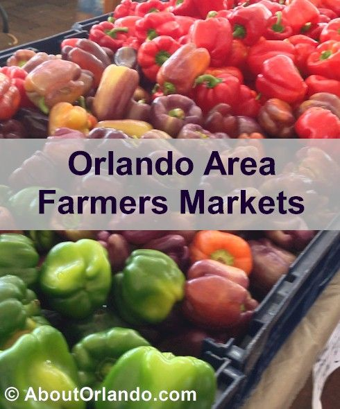Where are the best Orlando Area Farmers Markets?  Weekly schedule for Farmers Markets, Orlando, Maitland, Winter Park and others in Orange, Seminole, Lake and Osceola Counties.