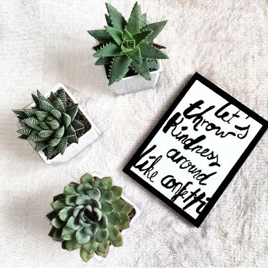 Motivation quote !  #motivation #quote #motivationquote #cactus #deco #decoration #plant #white #green #spring #blog