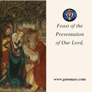 The 2nd of February is the Feast of Presentation of the Lord, also known as Feast of the Purification of the Blessed Virgin Mary, or Candlemas. #saint #saints #saintoftheday #catholic #catholicsaint #catholicsaint