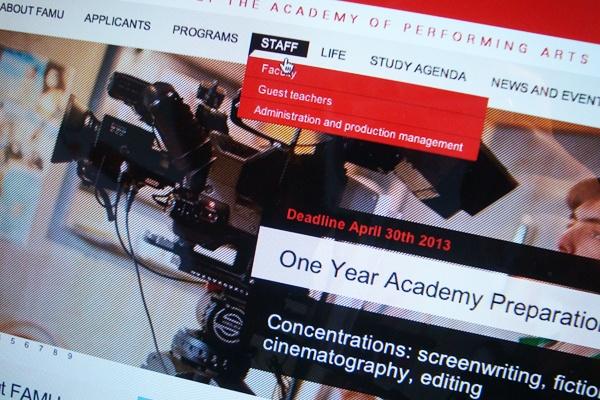 Website - FAMU International by Dominika Gorecka, via Behance