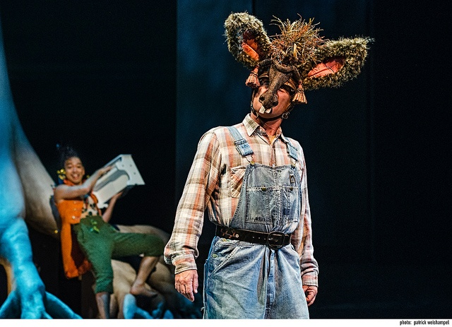 a midsummers night dream transformation Staging and transformation of gender archetypes in a midsummer night's dream, m butterfly, and kiss of the spider woman.