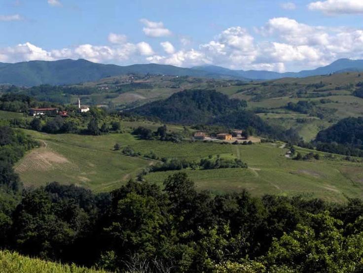 Hills around Canevino and Rocca di Giorgi