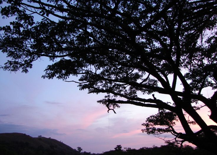 Rincon de la Vieja National Park protects a beautiful dry forest landscape in the northwest of Costa Rica. Named after the active Rincon de la Vieja volcano, the park is still relatively visitor-free and is home to some 200 bird species.