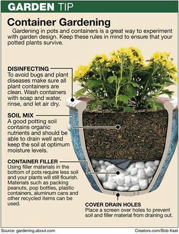 Container Gardening Is Great For Patios And Small Spaces. The Key Is To  Properly Prepare