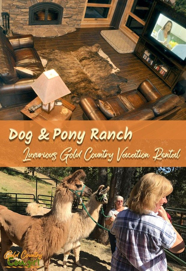 It's been two decades in the making but Troy and Cyndi Harrell's dream has finally come to fruition. They recently hosted a thank you/open house celebration for their Dog & Pony Ranch in Jackson, California. They officially became residents of Amador County the end of last year but waited for better weather to have the celebration for the completion of their home and luxurious Gold Country vacation rental.
