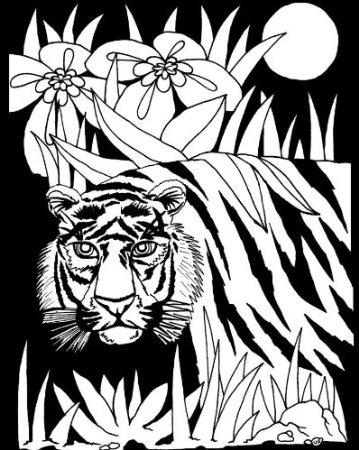 19 best Coloring Books images on Pinterest | Coloring books ...