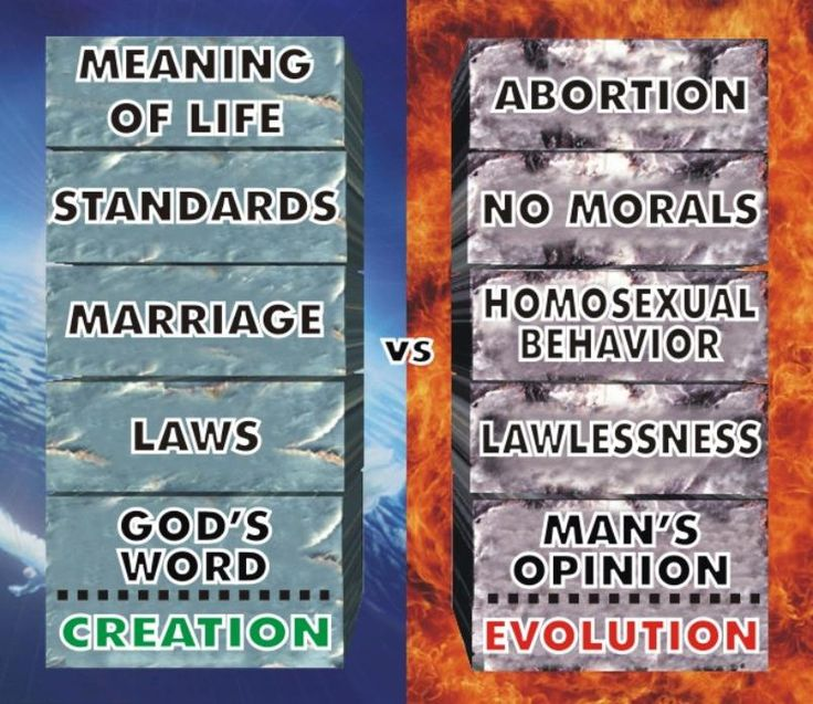 Creation versus evolution essay