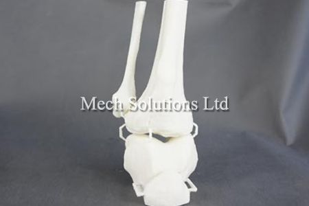 3D Printing human bone for medical research and education, using PLA and FDM technology, professional CAD designers to create 3D drawing, printed with high precision and details, based in GTA Toronto, Ontario, Canada