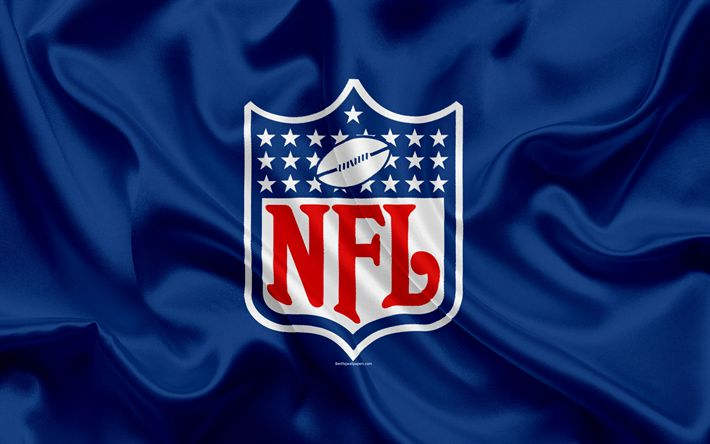 Hämta bilder National Football League, NFL logotyp, emblem, NFL, USA, silk flag, blå siden konsistens