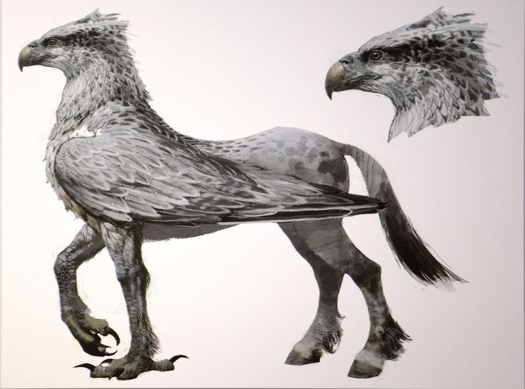"""Hippogriff/Hippogryph - a mix of an eagle (the Osprey or the Harpy is mostly used in depictions - for example the """"Harry Potter"""" movies) - Poetry of the Italian Renaissance; It is the offspring of an Gryphon/Griffin and a mare. It travels quickly through the air and is said to be able to fly to the moon and back ."""